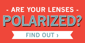 How To Tell If Your Sunglasses  how do you check if sunglasses are polarized global business