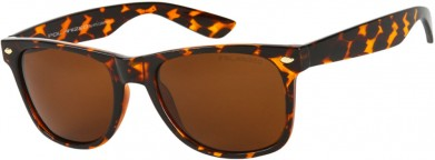 Rachel Bilson sunglasses
