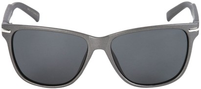 Polarized Wayfarers