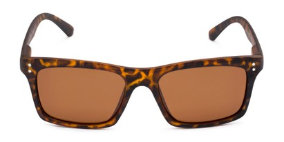Front of Arcadia in Matte Tortoise Frame with Brown Lenses