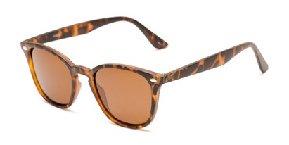 Angle of Backpacker #16391 in Brown Tortoise Frame with Amber Lenses, Women's and Men's Retro Square Sunglasses