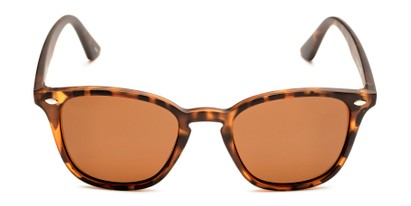 Front of Backpacker #16391 in Brown Tortoise Frame with Amber Lenses