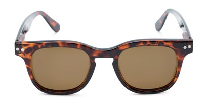 Front of Buchanon #3391 in Tortoise Frame with Amber Lenses