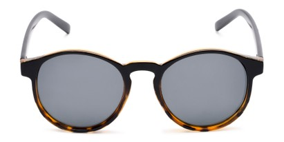 Front of Cash #2029 in Black/Tortoise Frame with Grey Lenses