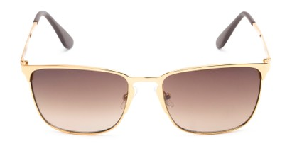 Front of Ellis #25049 in Glossy Gold Frame with Amber Lenses