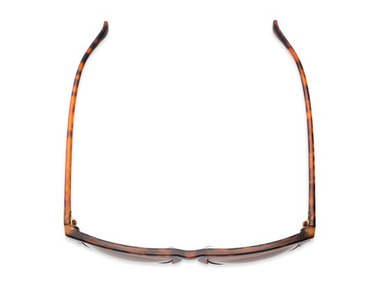 Overhead of Floyd #2032 in Tortoise/Grey Frame with Amber Lenses