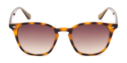 Front of Franklin #5126 in Tortoise/Brown Frame with Amber Lenses