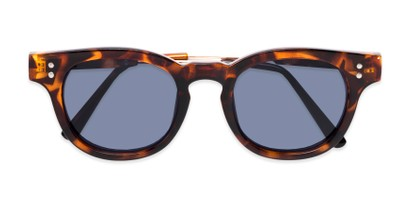 Folded of Geary #540991 in Tortoise Frame with Blue Lenses