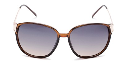 Front of Kemper #31954 in Brown Frame with Blue Smoke Lenses