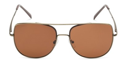 Front of Liv #3137 in Dark Gold Frame with Amber Lenses