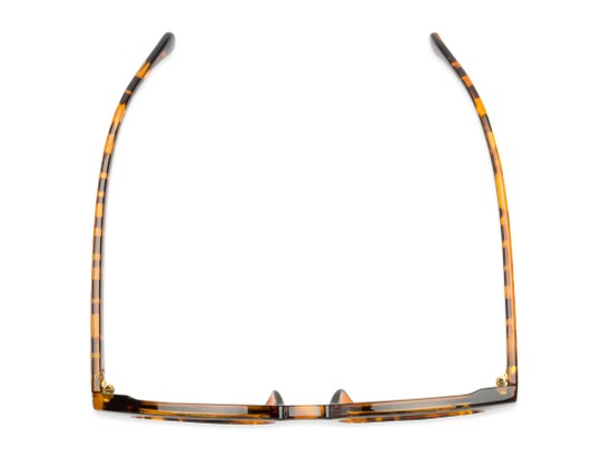 Overhead of Myth #16091 in Tortoise Frame with Grey Lenses
