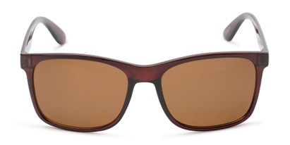 Front of Perez #1651 in Clear Brown Frame with Amber Lenses