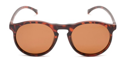 Front of Potrero #16030 in Matte Dark Tortoise Frame with Amber Lenses