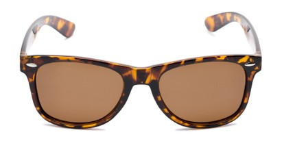 Front of Rambler in Tortoise Frame with Amber Lenses
