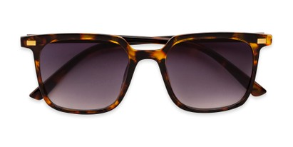 Folded of Manny in Tortoise Frame with Smoke Gradient Lenses