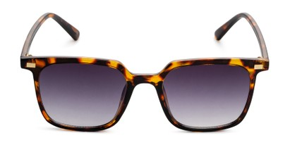 Front of Manny in Tortoise Frame with Smoke Gradient Lenses