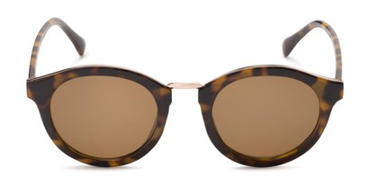 Front of Tide #7091 in Glossy Tortoise/Gold Frame with Amber Lenses