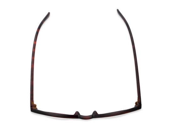Overhead of Vincent #3811 in Matte Tortoise Frame with Clear Lenses