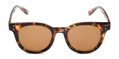 Front of Waterloo #71271 in Tortoise Frame with Amber Lenses