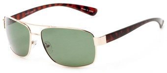 Angle of Ortiz in Gold and Tortoise Frame with Green Lenses, Men's Aviator Sunglasses