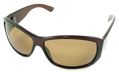 Angle of SW Polarized Style #45 in Brown Frame, Women's and Men's