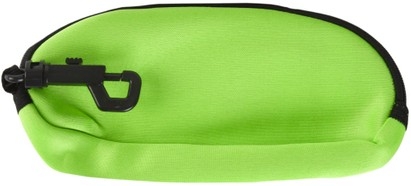 Green Sunglasses Case